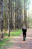 rustande parkkvinna Royaltyfri Bild