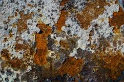 Rusted起了水泡油漆被构造的背景 图库摄影