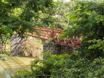 Rusted and abandoned iron bridge between the trees. Iron bridge over the river, rusty and abandoned in the rain forest Royalty Free Stock Image