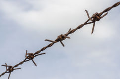 Rusted barb wire. A barb wire which filled by rust Royalty Free Stock Image