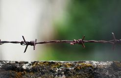 Rusted barbed wire. Rusted barbwire with background Royalty Free Stock Images