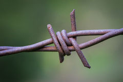 Rusted Barbs of Wire Fence Royalty Free Stock Photo