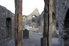 Through Rusted Bars Stock Images
