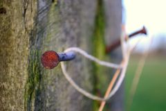 Rusted bent nails. Royalty Free Stock Photo