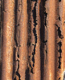 Rusted Corrugated Iron Royalty Free Stock Photography