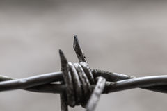 Rusted dangerous wire Stock Images