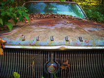 Rusted Dodge. Old Dodge rusting away in the woods overtaken by time symbolizing the fall of the American car industry Stock Images