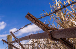 Rusted Fence Line. Royalty Free Stock Photography