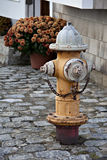 Rusted fire hydrant on cobblestone street. Royalty Free Stock Images