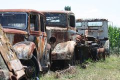 Rusted and forgotten. Rusted old cars long forgotten sitting in a paddock, Gisborne, New Zealand Royalty Free Stock Photo