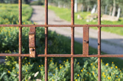 Rusted gate Royalty Free Stock Image