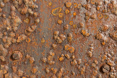 Rusted Iron Metal Surface showing texture and background. Background iron plate, corroded, rusted, blistered Stock Photo