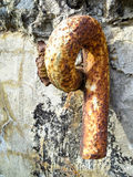 Rusted iron wall loop Stock Images
