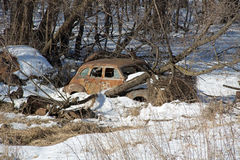 A Rusted Junk Car in the Woods Royalty Free Stock Photography