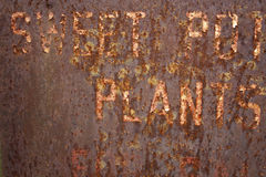 Rusted Metal Background. Partially visible words Sweet Potatoe Plants for Sale Royalty Free Stock Photo