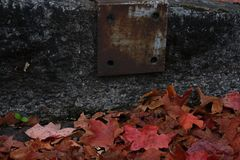 Rusted metal on sidewalk with fall foliage leaves on the ground stock photos