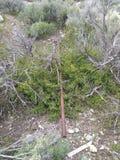 Rusted metal tube nature trash royalty free stock photos