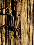 Rusted Nails in Fence Post Vertical Stock Photography