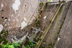 Rusted old metal ladder goes up. On grunge concrete wall Stock Images