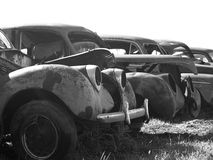 Rusted Out Antique Cars Stock Photo