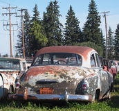 Rusted Out Antique Cars Stock Image