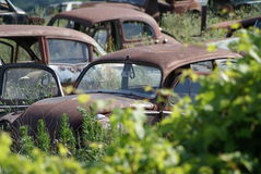 Rusted out bugs. In a junkyard in southern ontario Stock Image