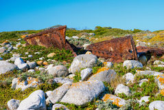 Rusted parts of shipwreck. Between indigenous flora and grey boulders with lichen Stock Photography