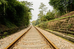 Rusted railway in verdant green at noon Royalty Free Stock Photography