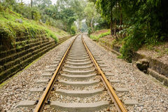 Rusted railway in verdant green on sunny day Stock Photos