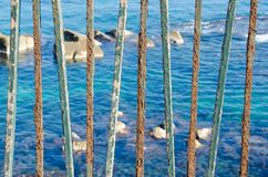 Rusted Seaside Railings. A row of rusted turquoise iron railings with peeling paint; the sunlit rocky sea visible between them royalty free stock images