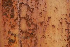 Rusted ship metal texture Stock Image