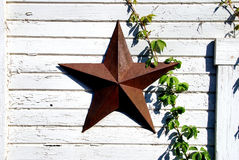 Rusted star and green vine. A rusty five-pointed star hung on a weathered white wall, with a green vine climbing up the wall royalty free stock image