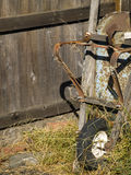 Rusted upright Wheelbarrow. Up-righted rusted Wheelbarrow by a wooden fence in the backyard Royalty Free Stock Image