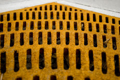 Rusted Yellow Grate. Rusted Yellow Drain Grate surrounding tree in Downtown Detroit royalty free stock image