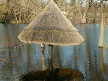 Rustend park na de vloed Royalty-vrije Stock Afbeeldingen