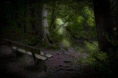 Rustende plaats in het bos Stock Foto