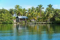 Rustic Amerindian hut with dock on tropical shore Stock Photos