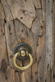 Rustic ancient door Stock Image