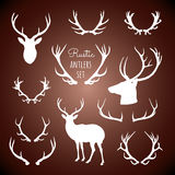 Rustic Antlers Set Royalty Free Stock Images