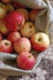 Rustic apples in a rough fabric bag. Natural rural products. Ecological fruits without pesticides and GMOs Royalty Free Stock Images