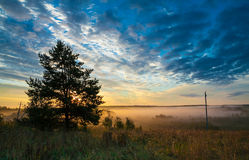 Rustic autumn landscape. Golden mist in the field stock photography