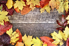 Rustic Autumn Leaves Background Stock Images