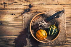 Rustic autumn place setting with miniature pumpkins on a rustic Royalty Free Stock Image