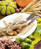 Rustic autumn table setting Stock Images