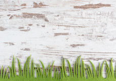 Rustic background. With green grass royalty free stock image