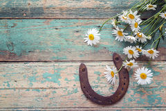 Rustic background with rusty horseshoe and bouquet of daisies on royalty free stock photo