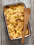 Rustic baked cauliflower cheese Stock Image