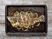 Rustic baked fish Stock Images