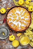 Rustic baked pie with quince Royalty Free Stock Image