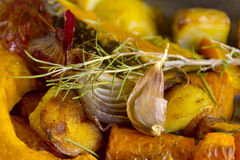 Rustic Baked Vegetables Stock Images